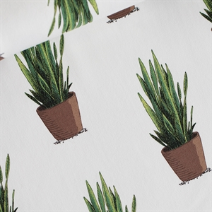 Picture of Sansevieria - French Terry - Off-White
